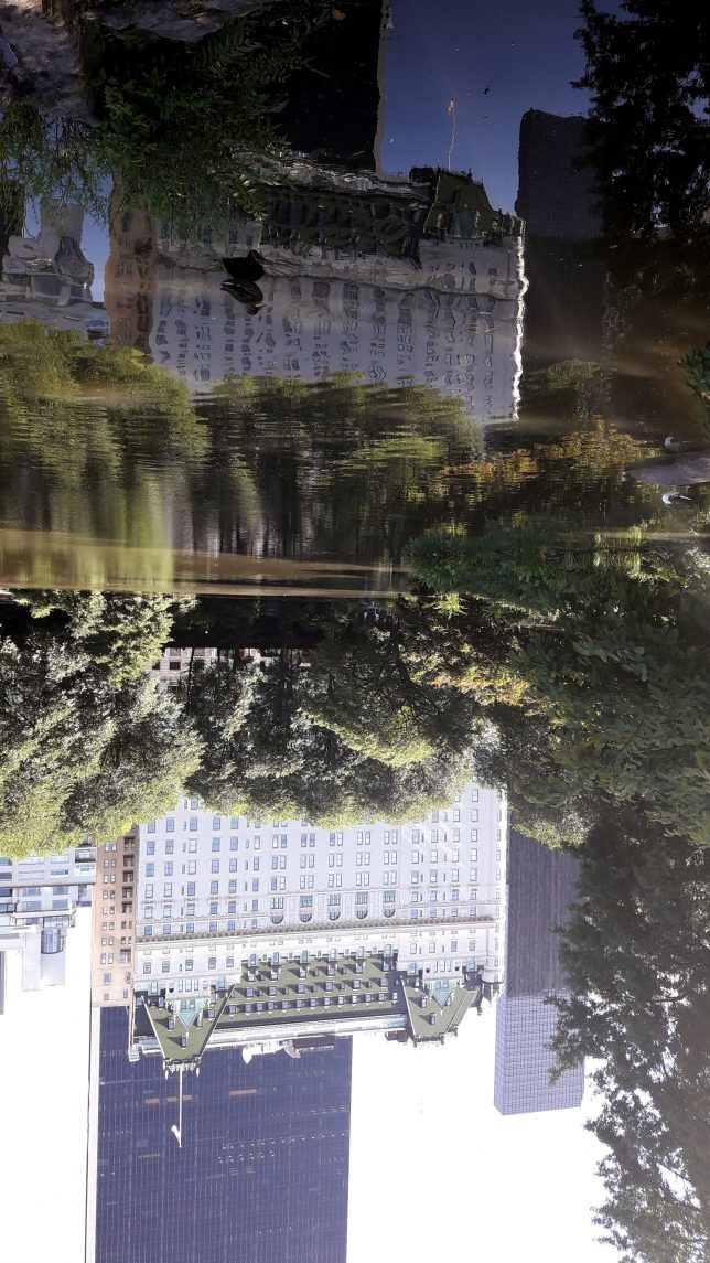 Central Park_reflejos